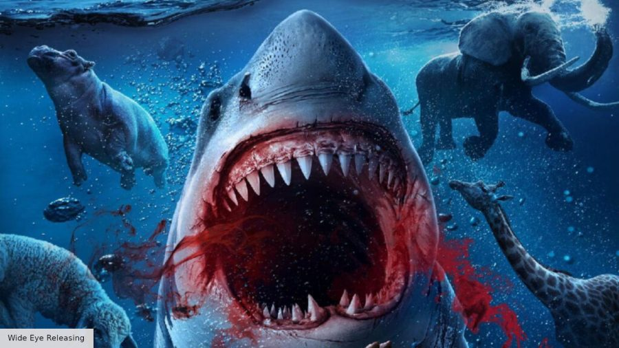Noah's Shark movie poster