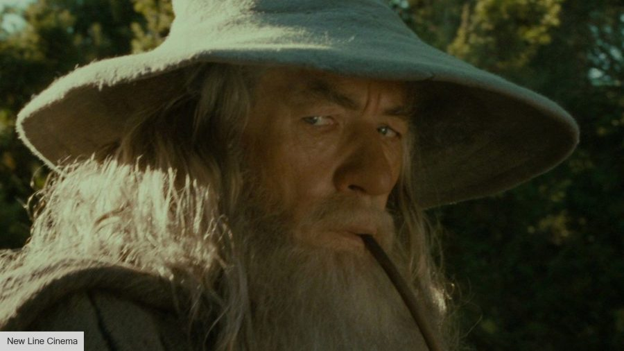 Sir Ian McKellen in The Fellowship of The Rings
