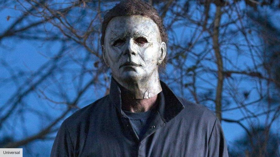 Michael Myers appears at a 6year olds birthday party and she loves it